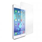 Защитная пленка для iPad mini 4 Матовая